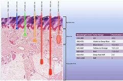 infrared light therapy for hair scalp